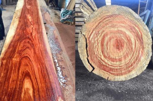 Vân gỗ vô cùng đẹp