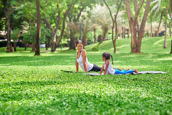 cây xanh giúp tăng cường sức khỏe