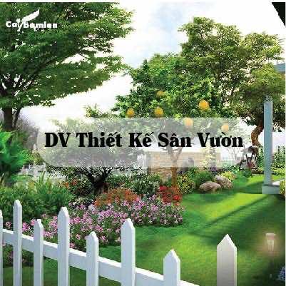 ảnh minh họa dịch vụ thiết kế sân vườn